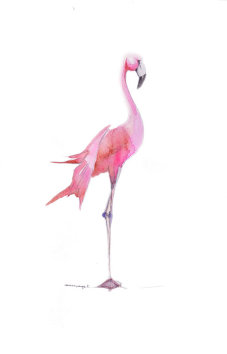 flamingo-rose